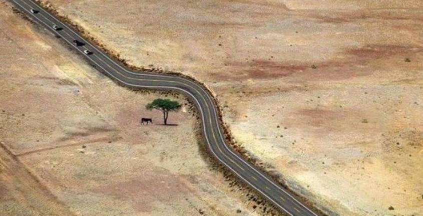 15 прекрасных фотографий о том, что значит уважение к природе.