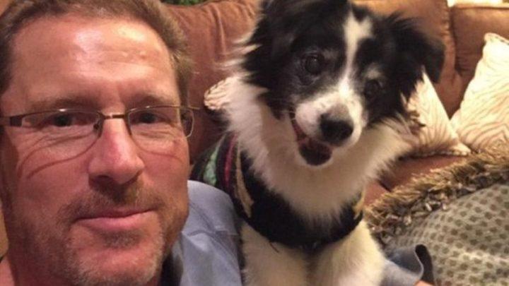 15 + фото отцов, которые запрещали приводить в дом «эту чертову собаку»